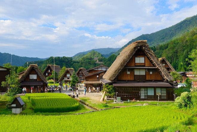 Thumbnail article shirakawa