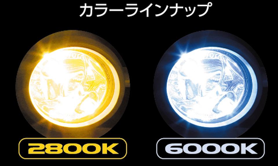 JEWEL LED FOG BULB EX3000